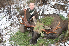 "Moose Hunting In Estonia • <a style=""font-size:0.8em;"" href=""https://www.flickr.com/photos/61427906@N06/8172839589/"" target=""_blank"">View on Flickr</a>"