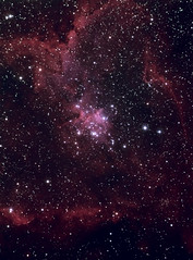 IC 1805 The Heart Nebula (Chuck Manges) Tags: sky stars star heart space telescope nebula astrophotography orion astronomy deepspace refractor 102mm deepsky ic1805 Astrometrydotnet:status=solved Astrometrydotnet:version=14400 qhy9m Astrometrydotnet:id=alpha20121155329422