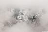 Winter mist (.:: Maya ::.) Tags: winter mist mountain snow beauty clouds bulgaria stara зима планина planina българия стара сняг балкан централен mayaeye mayakarkalicheva маякъркаличева