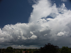 West Auckland clouds (Zelda Wynn) Tags: sky nature sunshine rain weather hail clouds auckland cumulus thunder troposphere newlynn ©zeldawynn zeldawynnphotography