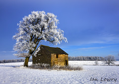 Derbyshire in the snow (Ian Lewry Photographer) Tags: winter snow tree barn landscape ian derbyshire lewry landscapephotographeroftheyear ianlewry