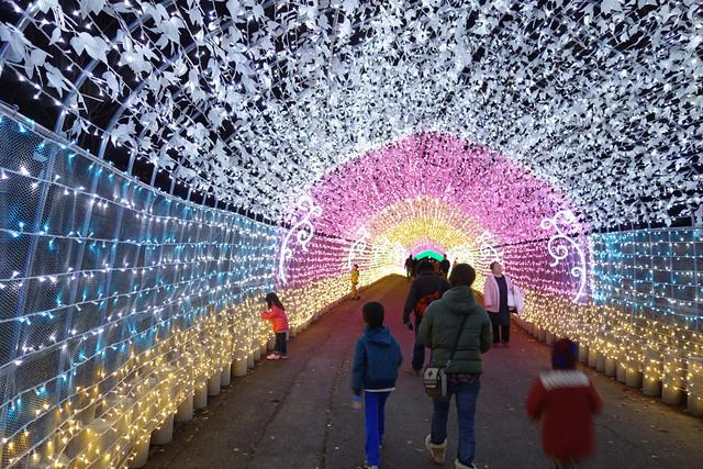 イルミネーションの定番光のトンネル
