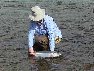 Alaska Kenai River Fishing and Saltwater 10
