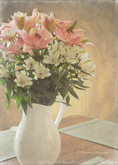 Kitchen Flowers (Andrea Mazzotta) Tags: flowers nikon textures lilies manhattanbeach pitcher florabella d3x kimklassen