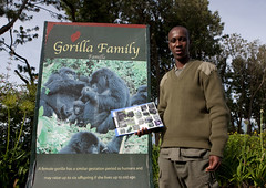 Gorilla guide in Volcanoes National Park, RwandaU PARC NATIONAL DES VOLCANS - RWANDA (Eric Lafforgue) Tags: africa man outdoors rwanda afrika briefing parc commonwealth touristattraction oneperson homme afrique eastafrica lookingatcamera centralafrica 9253 kinyarwanda ruanda gorillatrekking afriquecentrale   regardcamera   republicofrwanda   ruandesa