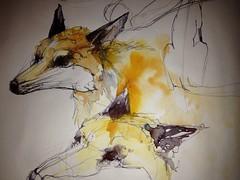 I met a fox...... (Jennifer Kraska) Tags: pen watercolor sketch jennifer sketchbook fox kraska jenniferkraska