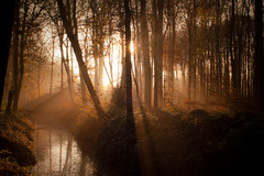 Autumn light (Jos Mecklenfeld) Tags: autumn sunlight mist fall nature netherlands misty fog river walking landscape evening minolta hiking walk herfst natuur hike 5d konica dynax groningen avond bos sunray terapel rivier westerwolde konicaminoltadynax5d minoltaaf28f28 toamn ruitenaa