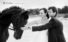 swietliste-fotografia-slubna-romantyczna-sesja-plenerowa-nad-morzem-Gdansk