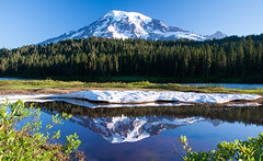 Reflection Lake Mt. Rainier