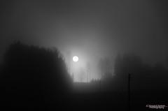 Foggy Sunrise (Usstan) Tags: trees bw ski norway fog lens landscape nikon no akershus silhoutte locations 1685mm d7000
