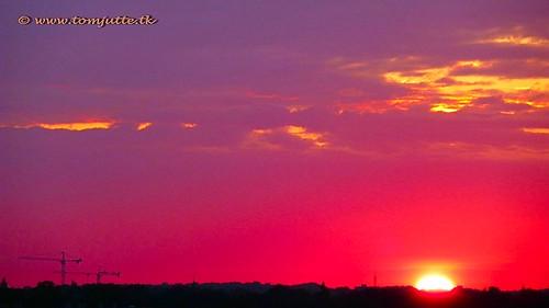 Summer Sunset, Zeist, The Netherlands - 423