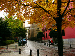 Calle de San Jernimo (Hugo Cesar Gusmao) Tags: street city autumn cidade espaa fall colors cores town calle andaluca spain espanha europa europe cityscape ciudad colores granada otoo rua outono scenics andaluzia calledesanjernimo