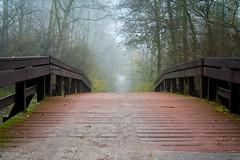 Foggy bridge (Wesley Lelieveld Photography) Tags: bridge autumn mist fog mystery herfst brug mysterie