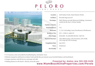 Peloro Miami Beach Project Description