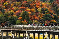 Togetsukyo Bridge (arcreyes [-ratamahatta-]) Tags: bridge autumn people japan ancient kyoto arashiyama 2012 crowded togetsukyo kyotoprefecture oiriver