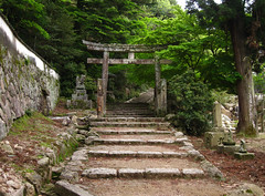 (-Michik-) Tags: road mountains japan forest japanese   torii