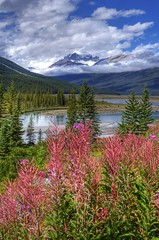 Nature's Majesty (dbushue) Tags: mountains nature clouds river landscape nikon bravo valley albertacanada 2012 banffnationalpark coth supershot columbiaicefieldsparkway absolutelystunningscapes d7000 damniwishidtakenthat coth5 dailynaturetnc12 sunrays5