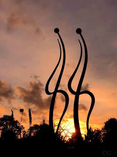 Tango at sunset {EXPLORED} (Charlottz - Away for a bit!) winter sunset sky orange cloud nature silhouette gold nikon skies colours dancing grasses essex p510 countyofessex