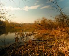 Watershed (BeetleBrained) Tags: trees sky tree nature water photoshop dark landscape nikon maryland watershed nikkor 18mm cs5