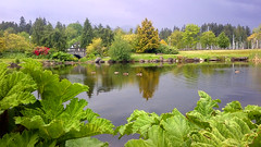 Vancouver by the Book: Devonian Harbour Park
