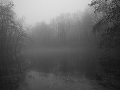 On Beaver Pond VII (wood_owl) Tags: morning trees ohio bw mist nature water monochrome fog mystery forest pond december mood bare dream silence contemplative beaverpond sooc munroefalls summitcountymetroparks