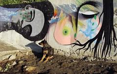 cada lágrima verde... (Felipe Smides) Tags: mural niebla semillas lágrimas smides felipesmides