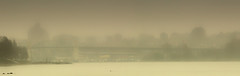 bridge pan (beelzebub2011) Tags: canada fog vancouver britishcolumbia ships seawall stanleypark freighters burrardbridge