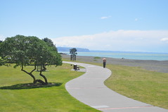Napier.. . (ronindunedin) Tags: new island bay north zealand kiwi napier hawkes