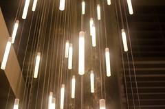 untitled (47 of 81).jpg (dextersmaster1) Tags: lightfall