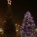 Buffalo Canalside Tree Lighting