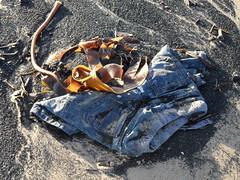 Beach shorts (Nekoglyph) Tags: blue seaweed abandoned beach lost sand rubbish denim shorts dumped coatham seacoal