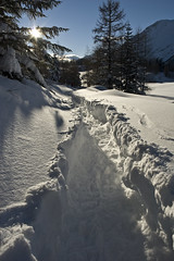 following the path (luca19632 - Luca Cortese) Tags: winter italy mountain snow montagne trekking montana italia path hiver nieve explore neve invierno neige sentiero inverno montagna italie valledaosta valdaosta ciaspole explored valledaoste