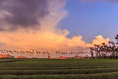 Mammatus Clouds (Liao Joseph) Tags:     clouds mammatus sunset    sky