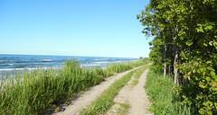 Camino (Azaharito) Tags: naturaleza nature poland polska balticsea pomeranian polonia morzebatyckie pomorze karwia marbaltico