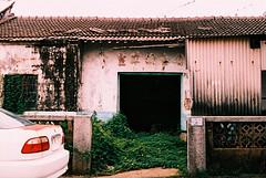 F1000005_lr (chi.ilpleut) Tags: green film june island chrome analogue 台灣 kodakfilm 2016 kodakelitechrome100 外島 瑬鑫之島 金門kinmentaiwan oceanpeopleisland