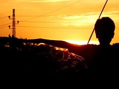 Enjoying the sunset (Shafi Uddin1) Tags: sunset youngboy man humanarm humanbody horizontal streetside portrait peopleportrait sky ngc supershot beautiful beautifulsunset beautifulsky bangladesh netrokona enjoyment cloudsky cheerful freedom humanbodypart nikon nikkor nikoncoolpixl830 nikonlens nikoncoolpix martin barabba julie