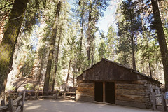 CA-CO (15 of 60) (codywellons) Tags: sequoia national park california nature kings canyon cabin a7ii