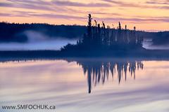 Stephen M. Fochuk_Sunrise (Stephen M. Fochuk) Tags: nwt northwestterritories sunrise mist fog landscape water reflection orange pink clouds