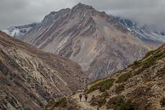 Towards the Thorung La Pass (Stewart Miller Photography) Tags: thorung thorong la pass high nepal trekking