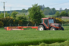 Fiatagri F115 Tractor with a Kuhn FC302GI Mower Conditioner (Shane Casey CK25) Tags: fiatagri f115 tractor kuhn fc302gi mower conditioner cnh casenewholland silage silage16 silage2016 grass grass16 grass2016 winter feed fodder county cork ireland irish farm farmer farming agri agriculture contractor field ground soil earth cows cattle work working horse power horsepower hp pull pulling cut cutting crop lifting machine machinery nikon d7100