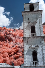 St. Tryphon's Cathedral tower (Marz88) Tags: tower cathedral trees kotor montenegro infrared ir