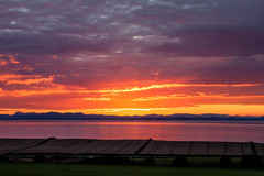 sunset_field_walking_3970 (allybeag) Tags: sunset fields solway cumbria crosby