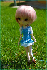 Dolce (Near_ River) Tags: pullip stica mizarstreasure dolce