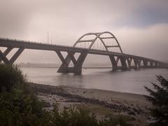 Waldport Bridge, early morning (Stv.) Tags: alseariver bridge camping family fog olympusomdem5 oregoncoasttrip usa vacation waldport oregon unitedstates exif:lens=olympusm17mmf18 geo:state=oregon exif:make=olympusimagingcorp exif:aperture=25 geo:lon=12407482212482 geo:country=unitedstates camera:model=em5 exif:focallength=17mm geo:city=waldport exif:isospeed=200 camera:make=olympusimagingcorp geolocation geo:lat=44434144613863 exif:model=em5