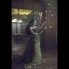 HANTERIEUR art-project : EVOLUTION {EXPLORED} (dominikfoto) Tags: allegorie hanterieur vermorel beauty beauté papillon butterfly fée fairy esprit spirits