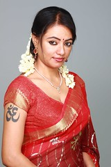 South Actress Madhuchandaphotos Set-3-Hot In Traditional Dress (39)