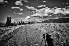 tetons_2016_4web (Jessica Haydahl Photography) Tags: grand teton national park wyoming tetons mormon row john molton barn apsens fall colors infrared photography nikon d810 d7000 pentax 645z medium formate landscape ansel adams