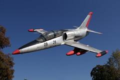 Aero L-39 Albatros, Speyer (michaelgoll777) Tags: l39