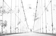 Beste aldean (Erre Taele) Tags: holtzarte zubia bridge larrau larraine holtzartekozubia puentedeholtzarte pont