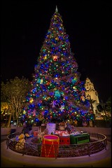 A Carthay Circle Christmas (Coasterluver) Tags: christmas night holidays disneyland christmastree disney dca hdr disneycaliforniaadventure buenavistastreet carthaycircletheatre andrewkirby coasterluver